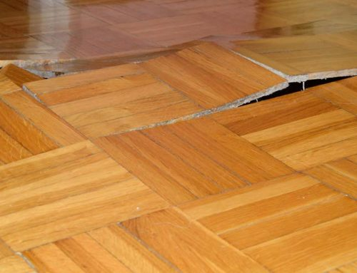 Slab Leak Insurance Coverage: What You Need to Know