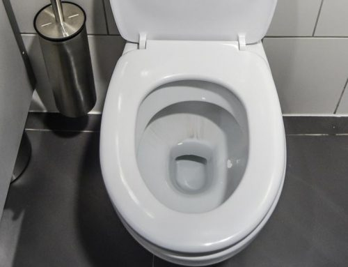 What Causes Black Streaks In Your Toilet Bowl